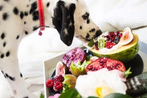 13 Foods You Can Safely Feed Your Dog
